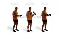 entrenamiento-de-biceps-posicion-munecas