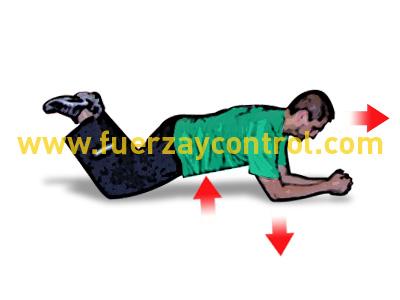 Ejercicio de fuerza abdominal en cuadrupedia de codos y rodillas