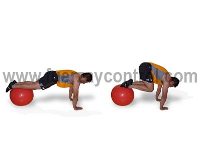 Flexion de cadera en apoyo de brazos con fitball