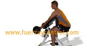 Posición inicial de curl bíceps concentrado con barra
