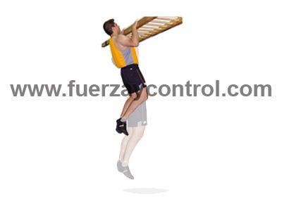 Ejercicio de flexión de brazos en suspensión
