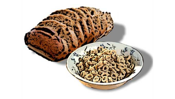 La fibra dietética: ¿Qué es? Tipos de fibra