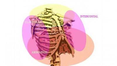 zonas-respiratorias-la-respiracion-la-inspiracion-en-el-deporte-entrenamiento