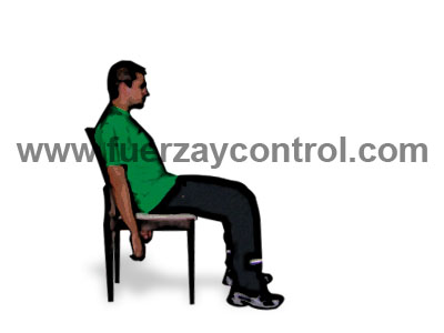 La postura sentada: El apoyo y los respaldos