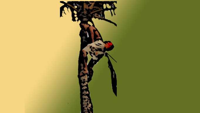 La trepa por cuerda: Subir con agarre de las piernas