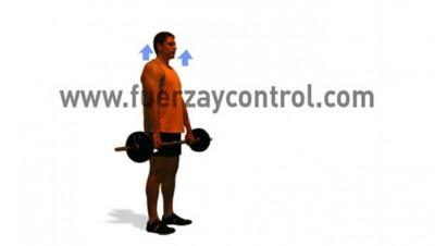 el-trapecio-superior-sujetando-peso-como-entrenar