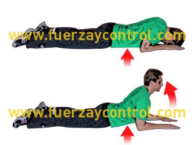 Ejercicio de estiramiento abdominal y fortalecimiento espalda superior