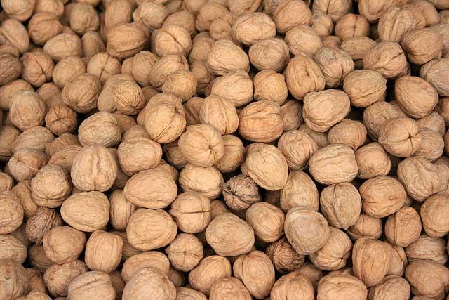 Las nueces: Fuente de ácidos grasos omega 3