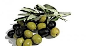La dieta de la zona (III): Los eicosanoides
