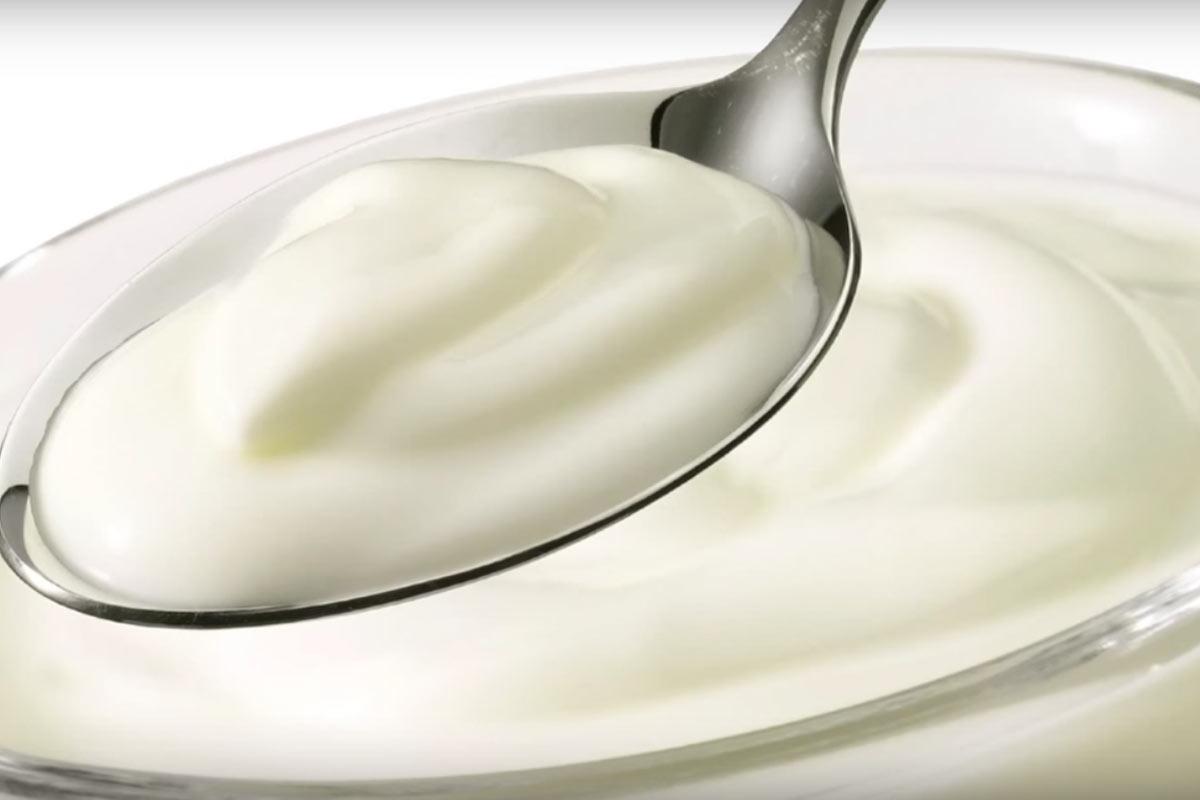 Yogurt griego. Todo lo que no sabias y deberías saber.